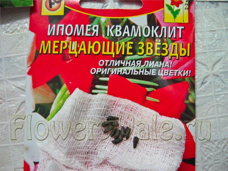 У иры 18 пакетиков семян однолетних цветов и 8 пакетиков семян