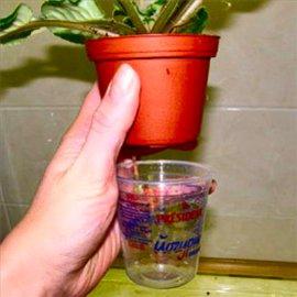 Цветочные горшки с резервуарами для воды