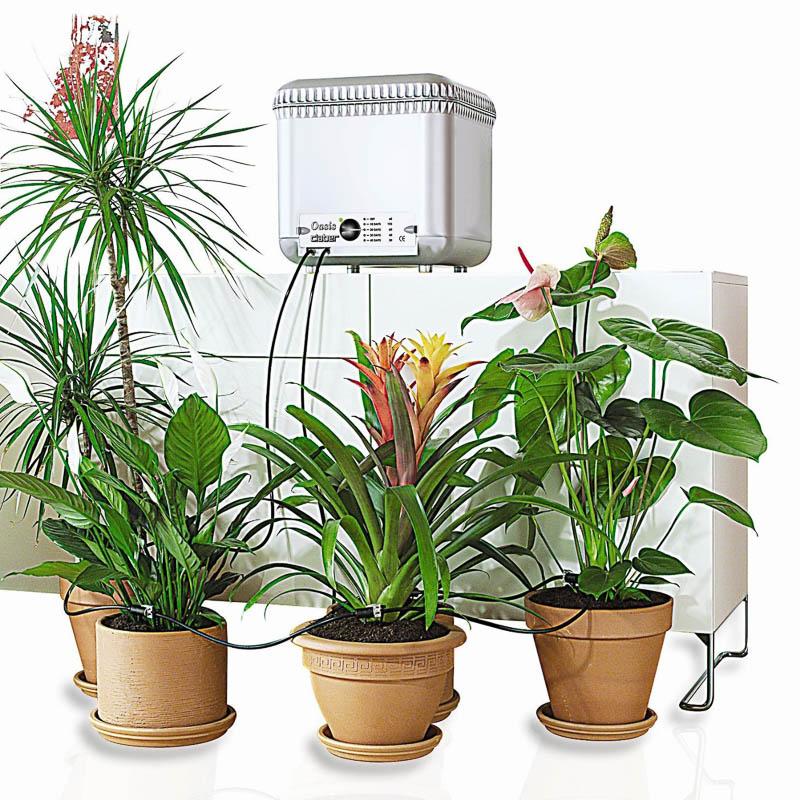 ороситель для полива комнатных растений что это