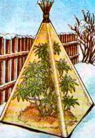 Укрытие растений на зиму рис. 2