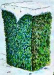 Укрытие растений на зиму рис. 4