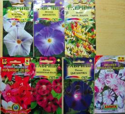 Семена ипомеи, приобретенные в 2011 году в разных местах