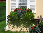 Подвесные корзины и ящики для украшения окон и балконов