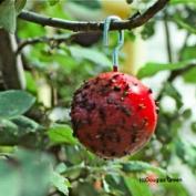 Вместо химии можно применить ловушки с липким садовым клеем, развешенные в деревьях