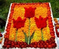 Герб из цветов